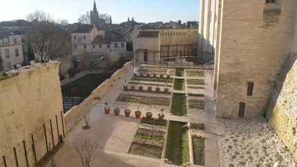 Photo des jardins du Palais des Papes